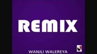 Wanjli Walereya  REMIX.flv