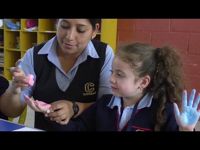 Servicios Educativos Cumorah Pre primaria y Primaria