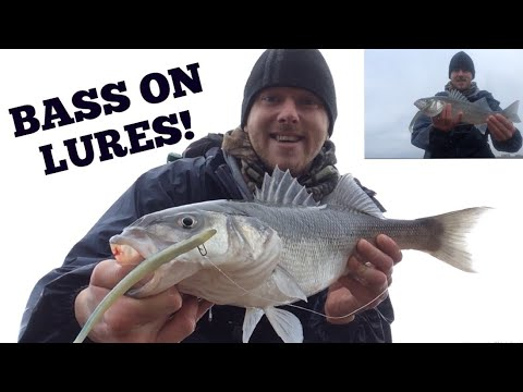 BASS ON LURES ! Windy Day Bass Fishing, Sidewinder Lures