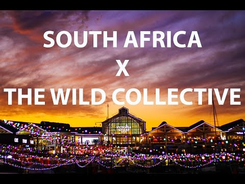 THE WILD COLLECTIVE X SOUTH AFRICA