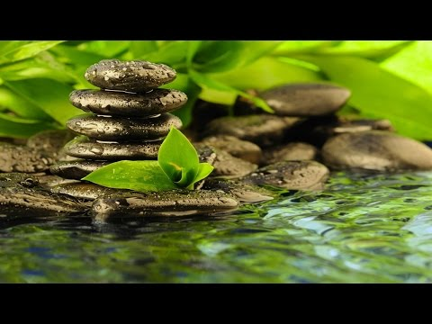 Zen Meditation Music With Water Sound: Indian Relaxing Music Therapy for Stress Relief and Sleep