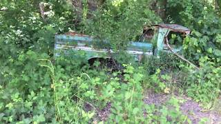 Kids Shot up and flipped over a 1964 chevy c10 truck in woods