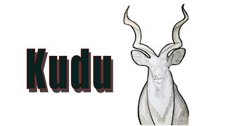 How to Draw Kudu