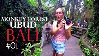 INDONESIA ADVENTURES - MONKEY FOREST 🐒 Destinations in Bali✔Worldtravel Vlog#65 Ubud - WELTREISE