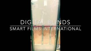 Digital Blinds over Privacy Smart Films