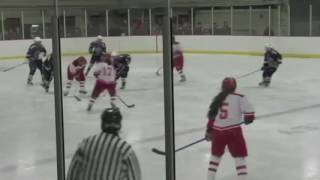 Acton Boxborough Varsity Girls Hockey vs Waltham Dec 2011