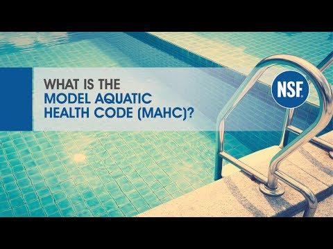 What Is the Model Aquatic Health Code (MAHC)? | NSF International