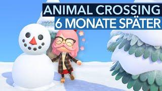 Warum ihr jetzt wieder mit Animal Crossing anfangen solltet