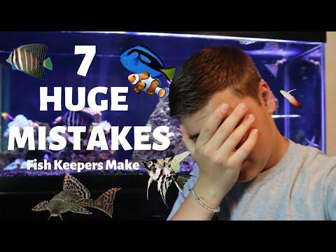 TOP 7 Aquarium MISTAKES Being Made