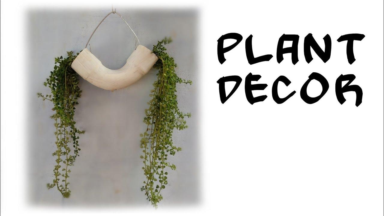 ഉദ്യാനകലയിൽ ഒന്നുംപാഴല്ല.... !! ഒരു കിടുക്കാച്ചി 'പുൽഞാലി' ഉണ്ടാക്കാം |  Plant Decor