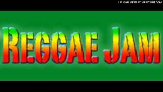 tanto metro + devonte,sean paul,buju banton- reggae jam