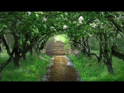 SONG FROM A SECRET GARDEN - Secret Garden: from the Album Heartstrings by Al Marconi