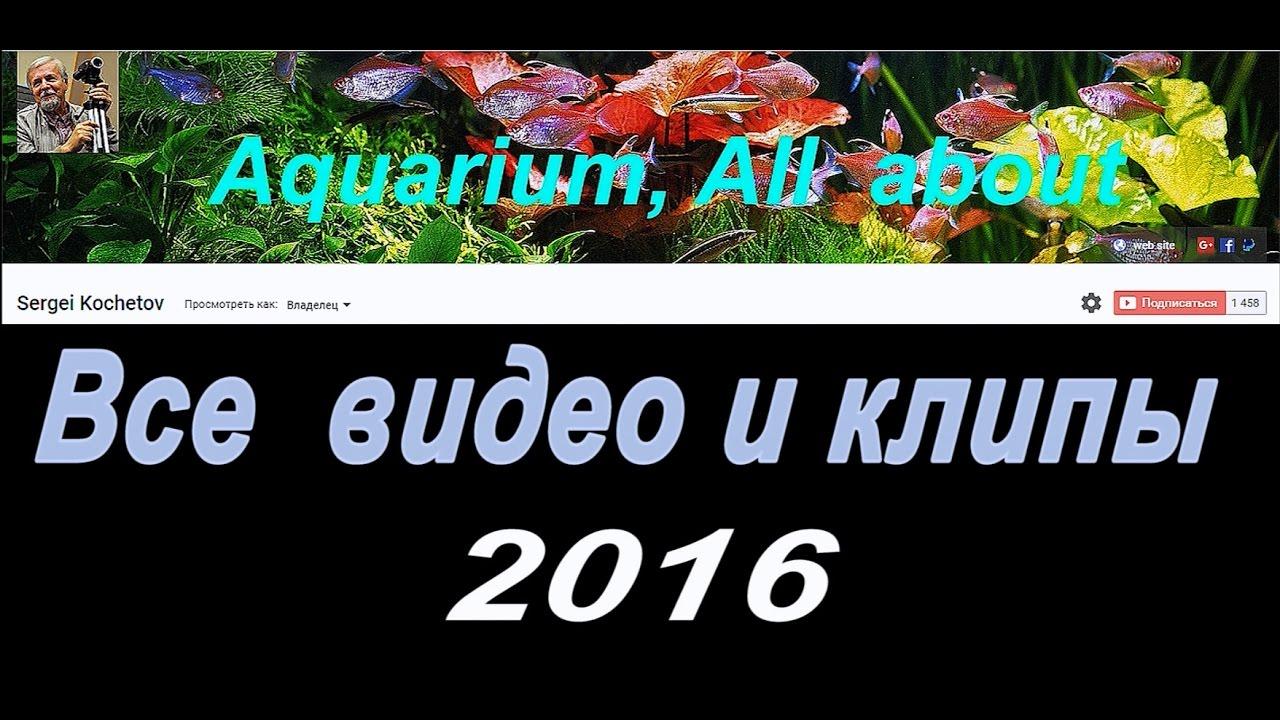 Все видео за 2016 год /All videos 2016