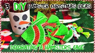 3 DIY HAMSTER CAGE Christmas Ideas | Decorating your Hamster's Cage Thumbnail