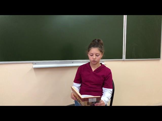 Изображение предпросмотра прочтения – ПолинаТыртова читает произведение «Воробей» И.С.Тургенева
