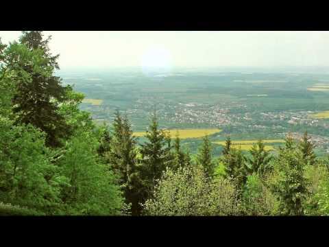 BEDŘICH SMETANA - Z ČESKÝCH LUHŮ A HÁJŮ