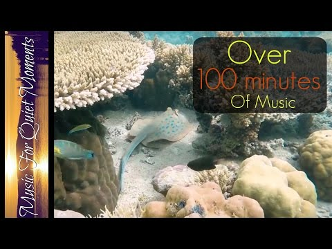 100 Minutes of Underwater Relaxation Music - Meditation, Study,  Zen