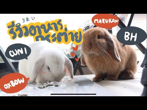 EP.12 กระต่ายกินอะไร? รีวิวหญ้า+อาหารเม็ด Cuni, Oxbow, Marukan, BH BunnyTTcoupe | Joyjee Loveberry