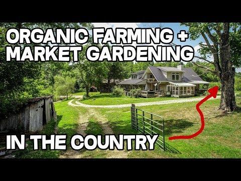 Organic Farm Sustainable Farming Orchard Marketing Gardening in Kentucky