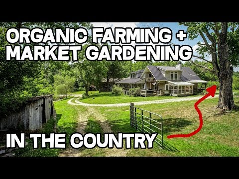 Organic Farm Sustainable Farming Orchard Marketing Gardening in Kentucky