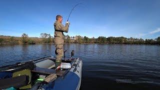 ЖОР ЩУКИ! ЩУКИ ТЕРЗАЮТ ПРИМАНКИ! Рыбалка осенью на спиннинг.