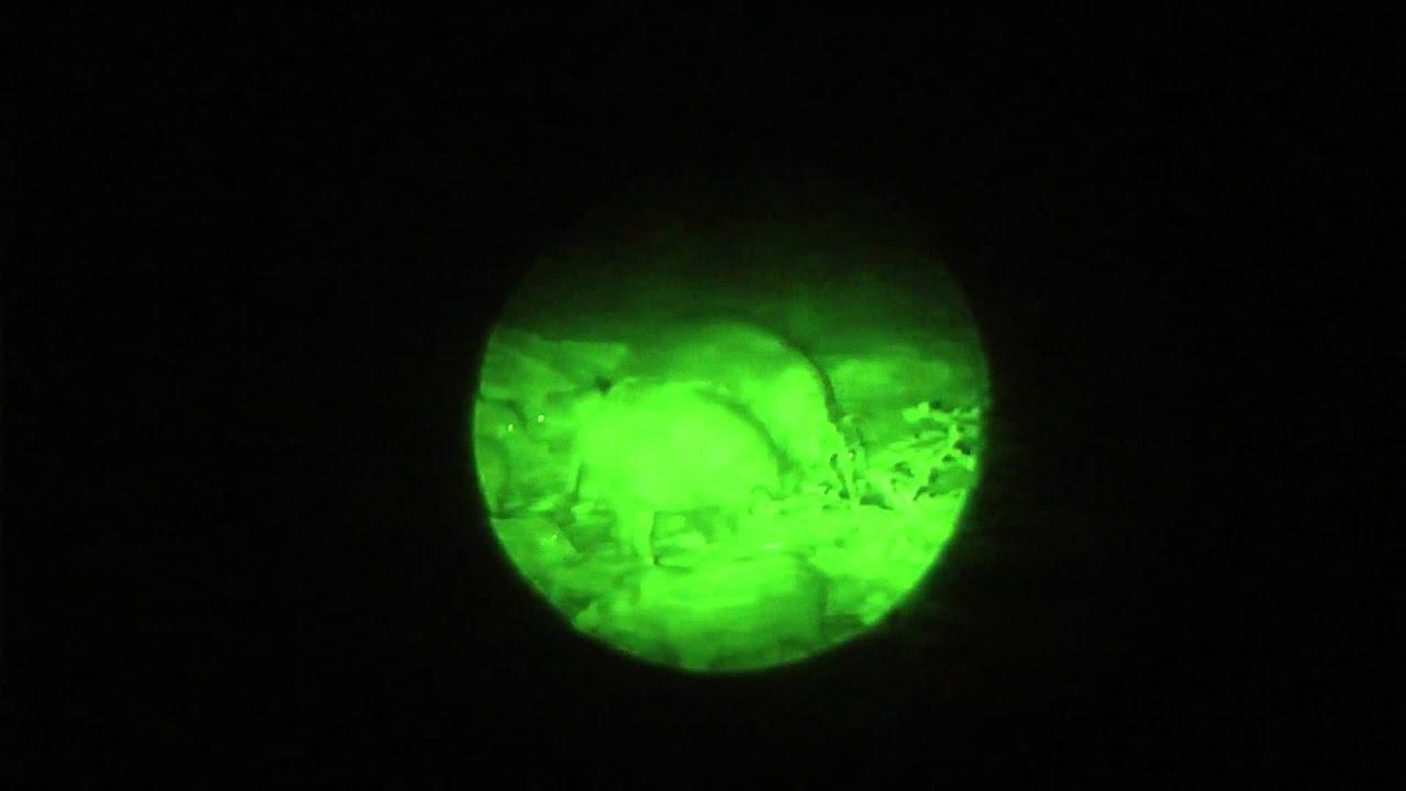 Laserluchs 850 50 pro nachtsichtgerät night lux hunter 1hd ax ag