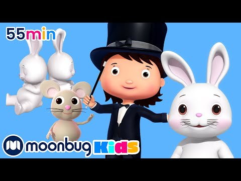 Silly Animal Song | And Lots More Original Songs | From LBB Junior!