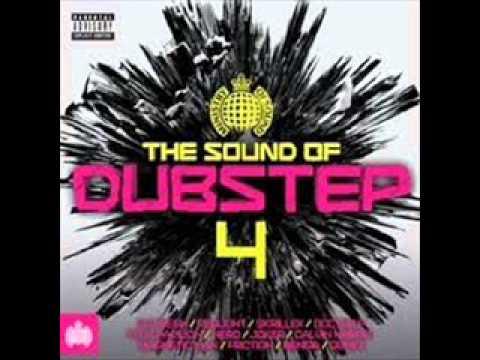 Natural Disaster - Laidback Luke vs Example - Skream Remix  The sound of dubstep 4