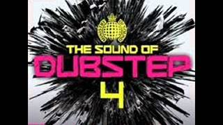 Natural Disaster - Laidback Luke vs Example - Skream Remix  The sound of dubstep 4