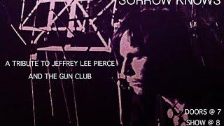 Jeffrey Lee Pierce Tribute: