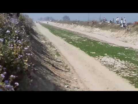 Jhota race in dhaknagla nahr