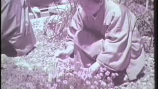 浜松市の公共施設を紹介(昭和43年)