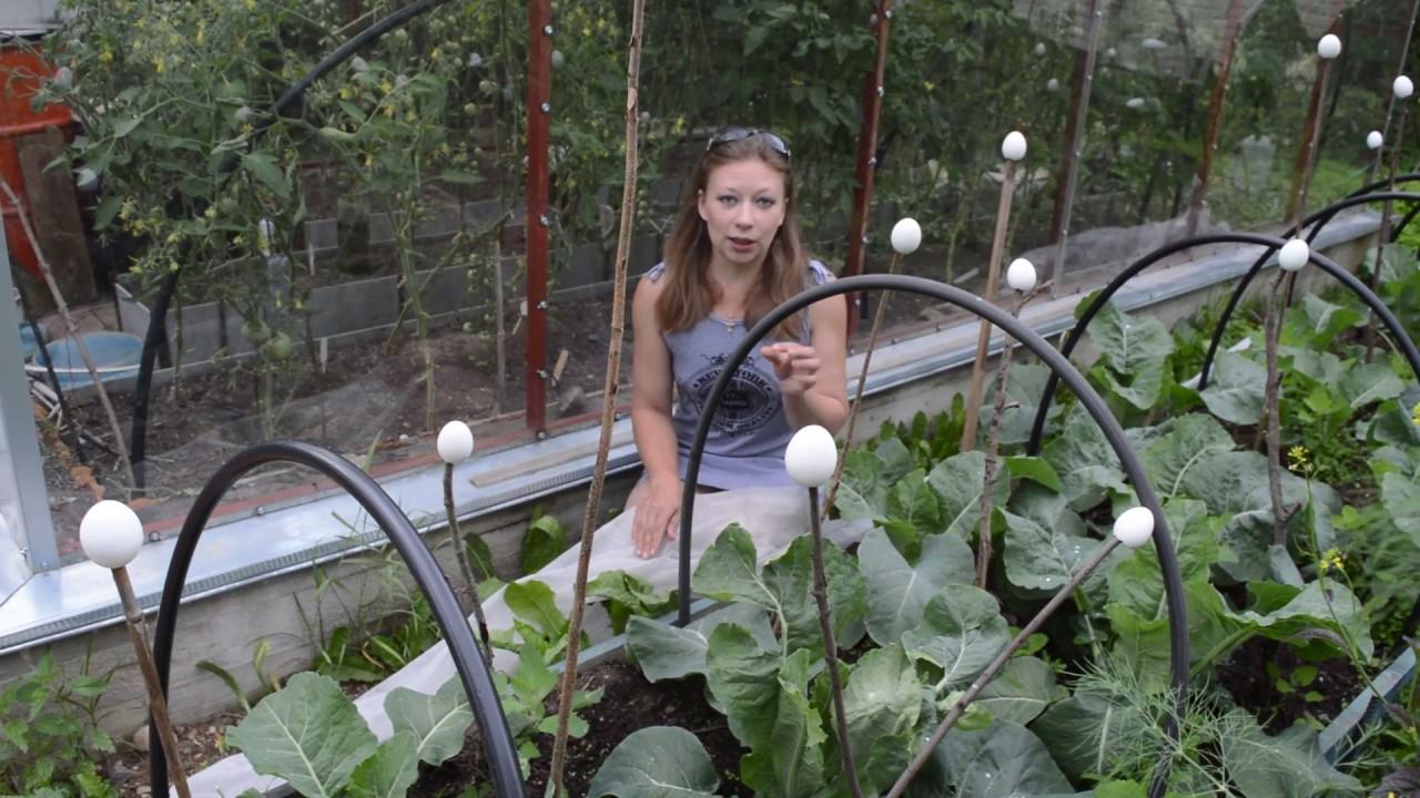 работа в огороде ижевск
