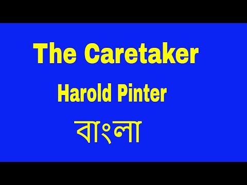 The Caretaker by Harold Pinter Bangla summary | বাংলা লেকচার | Bengali Lecture