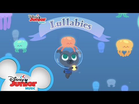 Puppies Going on a Mission! | 🎶 Disney Junior Music Lullabies | Disney Junior