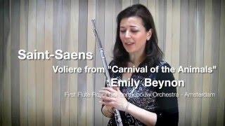 Мастер класс, флейта.Эмили Бейнон, первая флейта оркестра Концертгибау, Амстердам