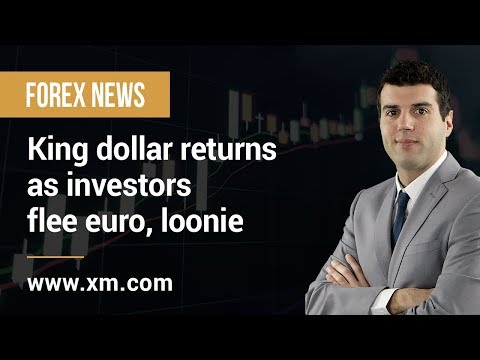 Forex News: 25/04/2019 - King dollar returns as investors flee euro, loonie
