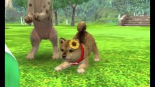 NINTENDOGS+CATS : Diaporama d