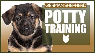 PUPPY TRAINING! GERMAN SHEPHERD POTTY TRAINING