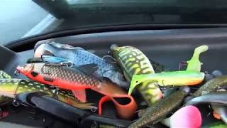 Savage Gear 4D Herring Shad video