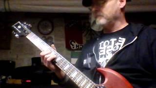 "Die Toten Hosen Guitar Cover ""Du lebst nur einmal"""