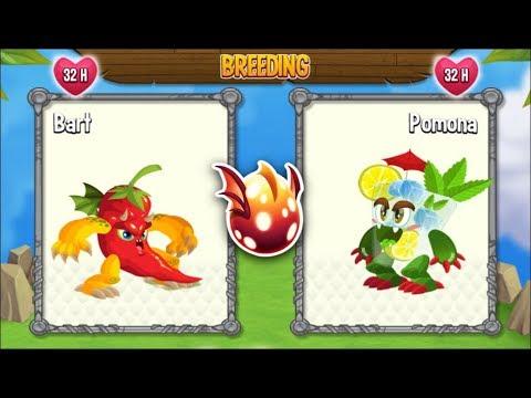 Dragon City: Spicy Dragon vs Mojito Dragon [EXCLUSIVE ...