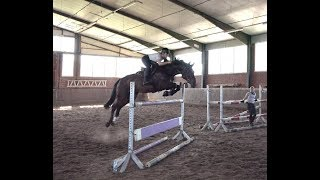 Trying Horses in Germany thumbnail
