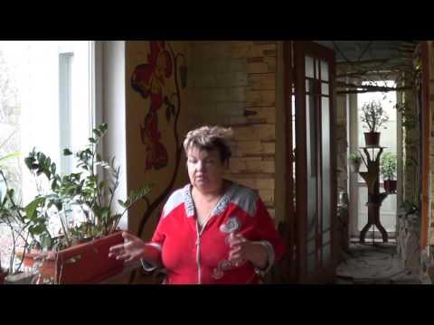 Адиантум ( Венерин Волос) . Почему Усыхают Папоротники. Ответ На Вопрос Подписчика