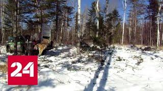 Растаявший снег не наполнил водохранилища центрального Крыма. Вести - Россия 24