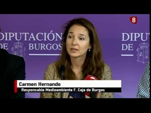 Noticias Primera Edición La 8 Burgos 05-06-2017