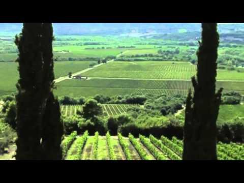 Banfi Brunello di Montalcino 2010 Wine