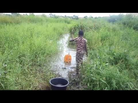 Help us to provide Drinking water for Zilidji in Togo