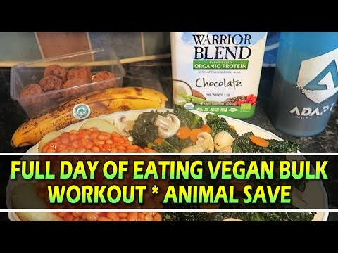 What I Eat In A Day Vegan Bulk   Workout   Norfolk's 1st Animal Save