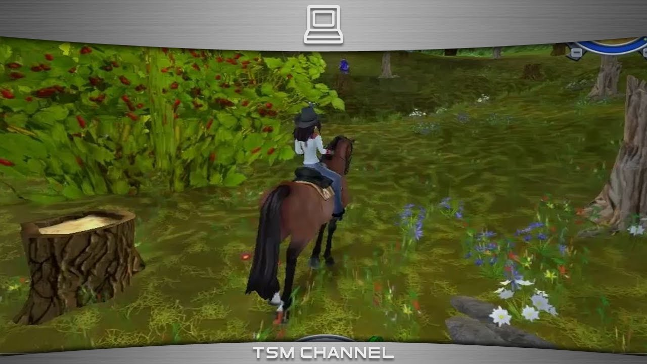 Star Stable 4